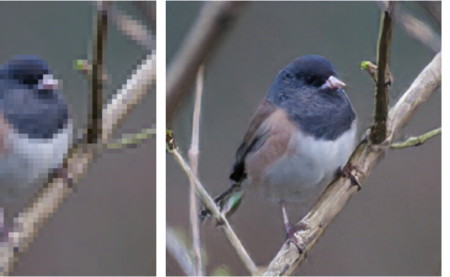 Photo: EnhanceNet-PAT is capable of upsampling a low-resolution image (left) to a high definition version (middle). The result is indistinguishable from the original image (right).