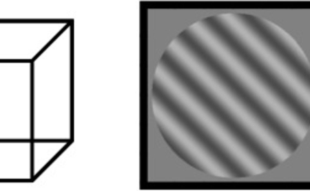 Bi-stable visual stimuli used for awareness studies. Left diagram shows a classical example, the Necker cube, where the surface depth perception switches over time. On the right, a binocular rivalry stimulus is shown. By putting one grating in one eye and the other grating in the other eye, our percept starts to switch between the two gratings. Interestingly, as in our main stimuli, the unpatterned donut region also takes over the left grating when the right stimulus is perceived. They are ideal and widely used tools to investigate the neural correlate of visual awareness because our percept switches while the physical stimulus remains constant. Graphics: MPI for Biological Cybernetics